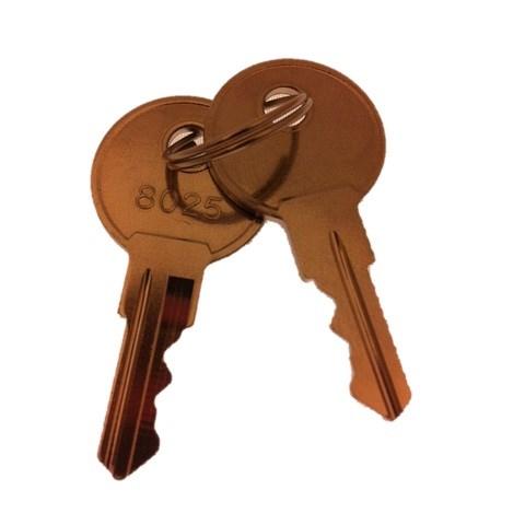 Hissmekano Elevator Keys